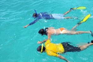 Dive Provo guide points out fish during a guided snorkeling tour